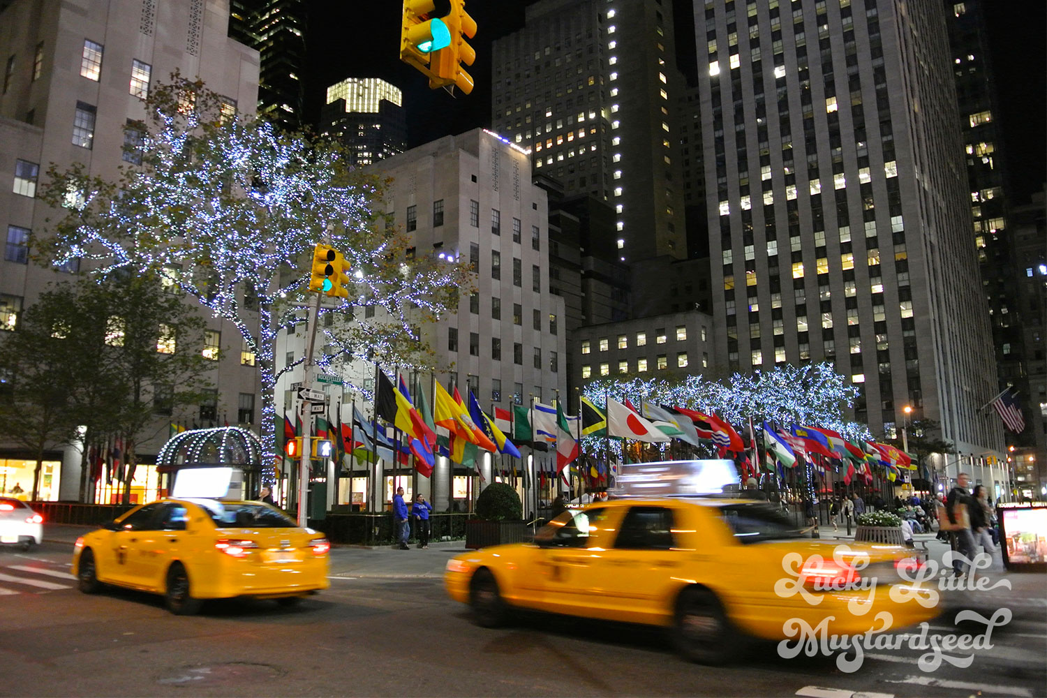 New-York-City-The-Pictures-16