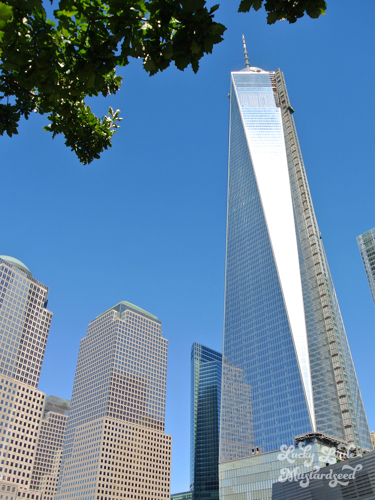 New-York-City-The-Pictures-19