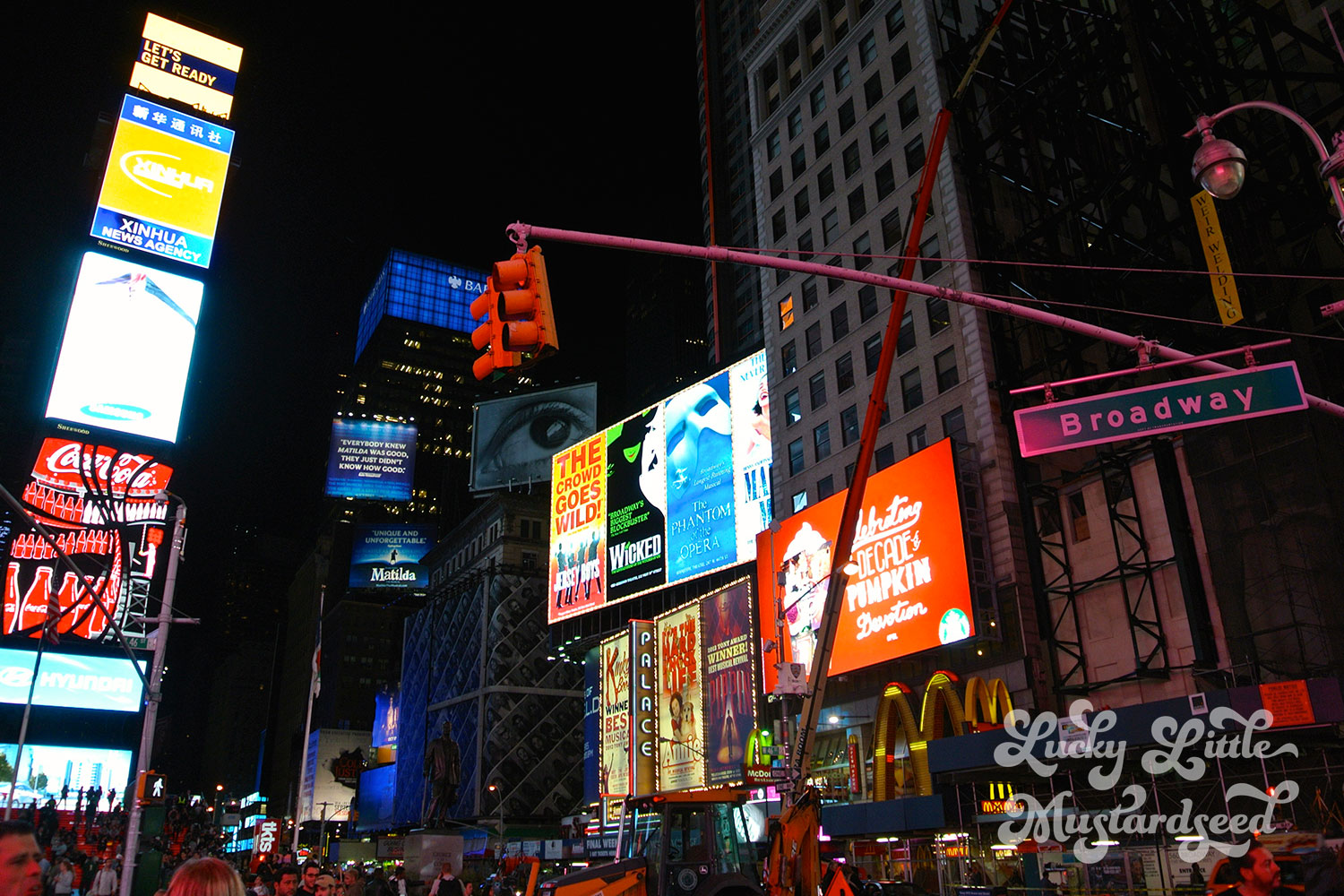 New-York-City-The-Pictures-27
