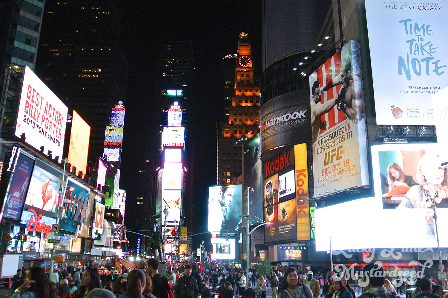 New-York-City-The-Pictures-28