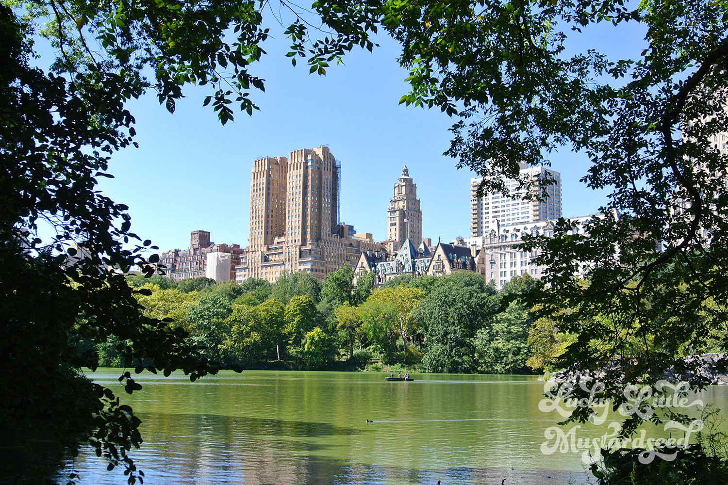 New-York-City-The-Pictures-7
