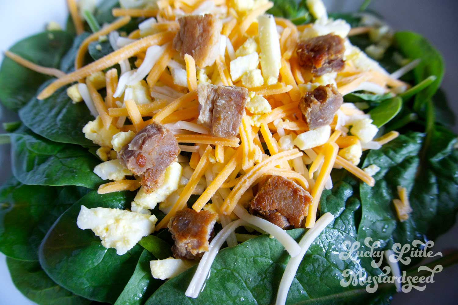 Spinach Salad with Bacon Croutons