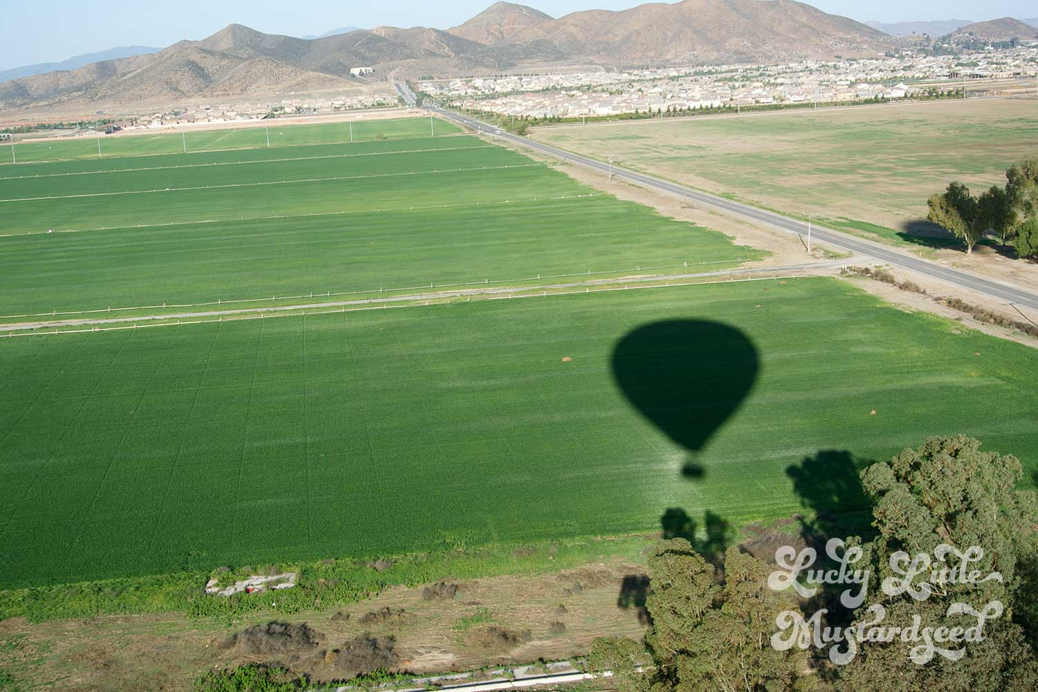 Sunrise By Air Balloon-5