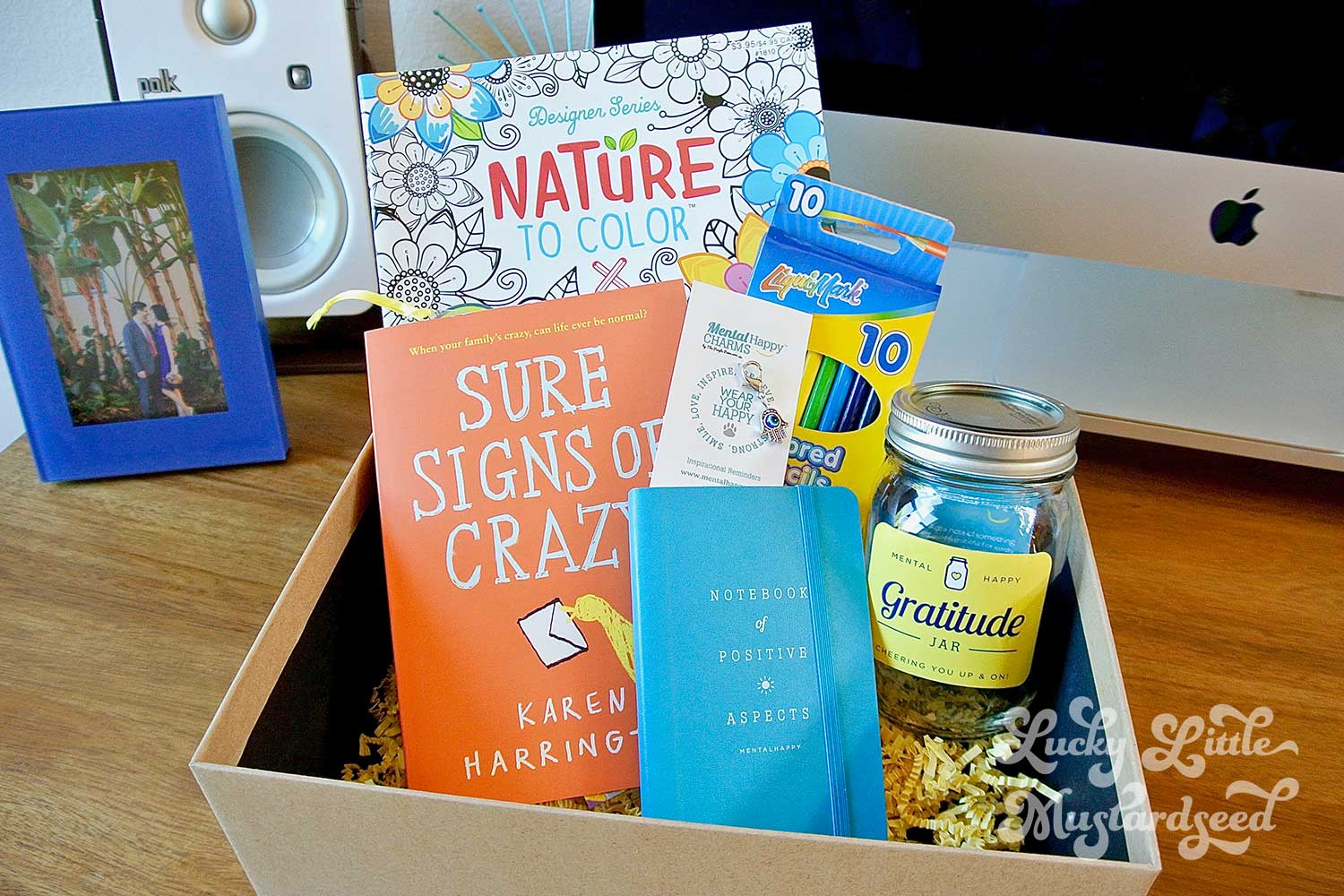 jenna-pilant-san-diego-lifestyle-blogger-lucky-little-mustardseed-mentalhappy-cheerbox-4
